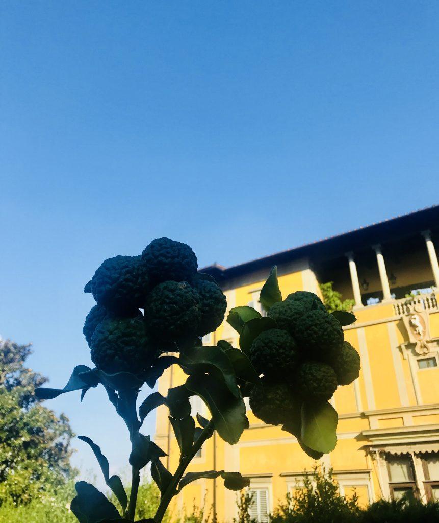 Villa Villoresi Via de' Bardi 12