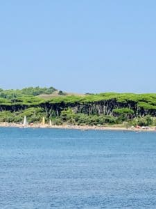 Etruscan Coast