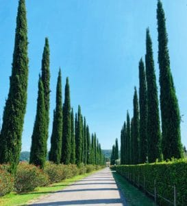 Tuscan houses and villas