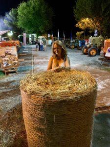 Harvest Festa