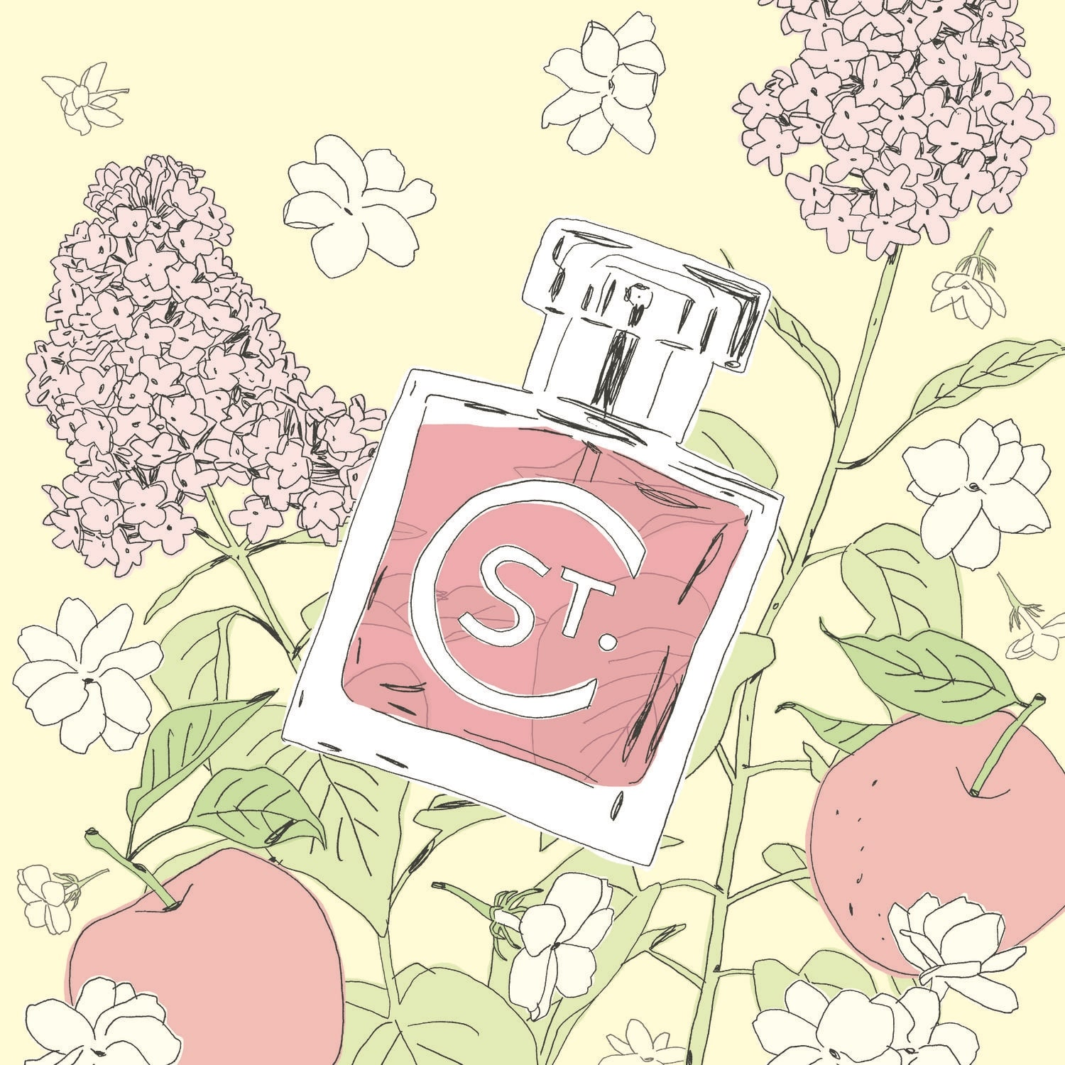 St.Clair Scents bottle drawing