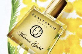 Exaltatum Mimosa Gold Perfume