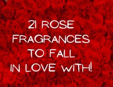 rose fragrances to fall in love with lisst