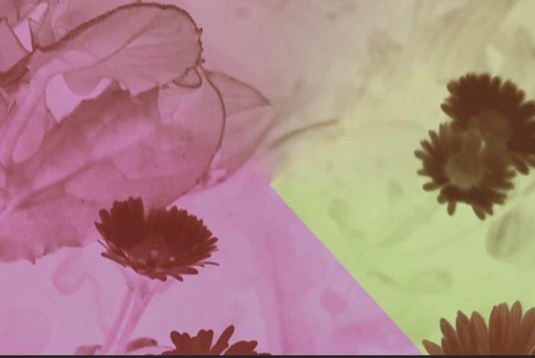 Pitti Fragrance 2021 visual