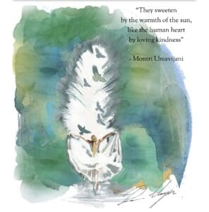 Poem Cavatina